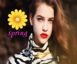 Flower-Of-Spring